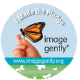 Image Gently pledge